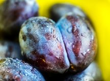 Ripe plums in plate Royalty Free Stock Photo