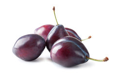 Ripe plums Stock Image