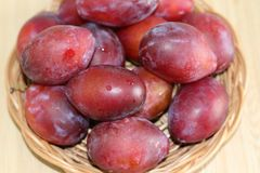 Ripe plums on straw plate stock image