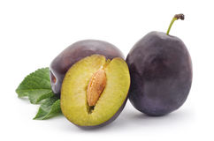 Ripe plums. Ripe plums on a white background royalty free stock image