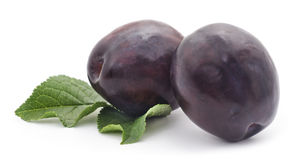 Ripe plums. Royalty Free Stock Images