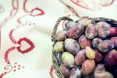 Ripe plums in wicker basket shortly after rain in bright sunlight. Close up to albanian harvest on traditional table cloth stock photo