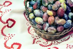Ripe plums in wicker basket shortly after rain in bright sunlight. Close up to albanian harvest on traditional table cloth stock image