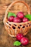 Ripe plums in a wicker basket Stock Photo