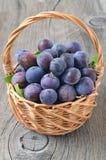 Ripe plums in a wicker basket Stock Image