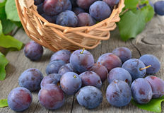 Ripe plums on the wooden table Stock Image