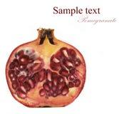 ripe pomegranate Royalty Free Stock Photo