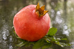 A ripe pomegranate with drops of water Royalty Free Stock Photos