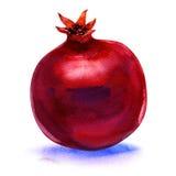 Ripe pomegranate fruit isolated on white background Stock Photography