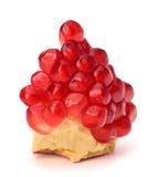 Ripe pomegranate piece Stock Image