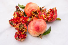 Ripe pomegranates fresh from the tree Stock Image