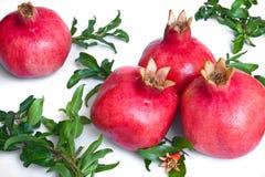 Ripe pomegranates with leaves Royalty Free Stock Photos