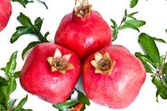 Ripe pomegranates with leaves Royalty Free Stock Photo