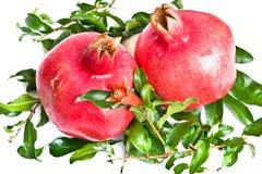 Ripe pomegranates with leaves Stock Photo