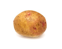 Ripe potato Royalty Free Stock Photo