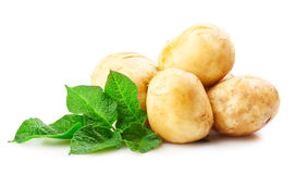 Ripe potatoes. Heap of ripe potatoes vegetable with green leafs isolated on white background Royalty Free Stock Photo