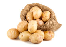 Ripe potatoes in a burlap bag Royalty Free Stock Photos