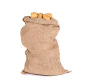 Ripe potatoes in burlap sack. Stock Photo