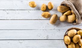 Ripe potatoes in burlap sack freely lying on board. Ripe potatoes in burlap sack and wooden basket freely lying on wooden board stock photo