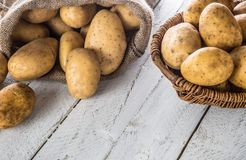 Ripe potatoes in burlap sack freely lying on board. Ripe potatoes in burlap sack and wooden basket freely lying on wooden board royalty free stock image