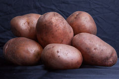 Ripe potatoes Royalty Free Stock Images