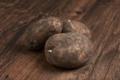 Ripe potatoes Royalty Free Stock Photography