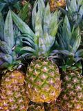 Ripe prettty pineapple on top of a pile of pineapples in a market. A ripe prettty pineapple on top of a pile of pineapples in a market Stock Photography
