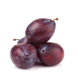 Ripe prune or plum isolated on a white background Royalty Free Stock Photos