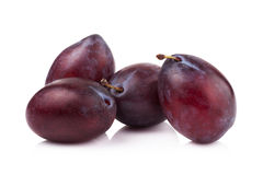 Ripe prune or plum isolated on a white background Royalty Free Stock Images