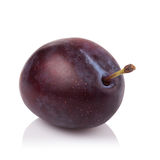 Ripe prune or plum isolated on a white background.  Royalty Free Stock Photos