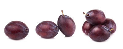 Ripe prune or plum isolated on a white background.  Royalty Free Stock Photo