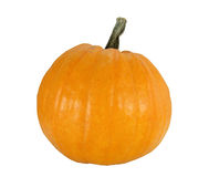 Ripe pumpkin Stock Photos