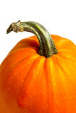 Ripe pumpkin. This is ripe pumpkin. It is theme of food Stock Photography