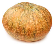 Ripe pumpkin Royalty Free Stock Photography
