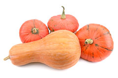 Ripe pumpkin Royalty Free Stock Photo
