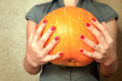 Ripe pumpkin in hands of woman royalty free stock photo