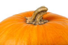 Ripe pumpkin Royalty Free Stock Images