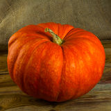 Ripe pumpkin on rustic wooden background Royalty Free Stock Image