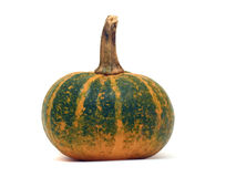 Ripe pumpkin with stalk Royalty Free Stock Photo