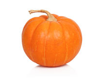 Ripe pumpkin with stem on white background royalty free stock photo