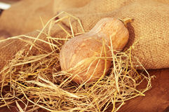 Ripe pumpkin with a straw and burlap Stock Photos