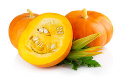 Ripe pumpkin vegetables with green levaes and blossom isolated Stock Image