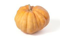 Ripe pumpkin Royalty Free Stock Image