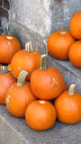 Ripe pumpkins. Pile of ripe pumpkins outdoors Stock Photography