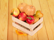 Ripe pumpkins and apples in  box on  background  light wood. Stock Image