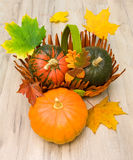 Ripe pumpkins and autumn maple leaves close-up Stock Image