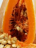 Ripe pumpkins cut Royalty Free Stock Photography