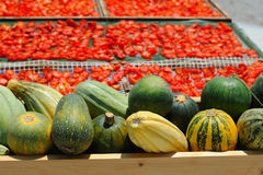 Ripe pumpkins, gourds and dried tomatoes Royalty Free Stock Photos