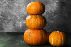 Ripe pumpkins on a green background Royalty Free Stock Images