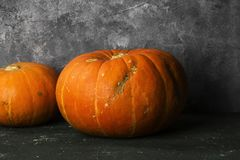 Ripe pumpkins on a green background Royalty Free Stock Photo